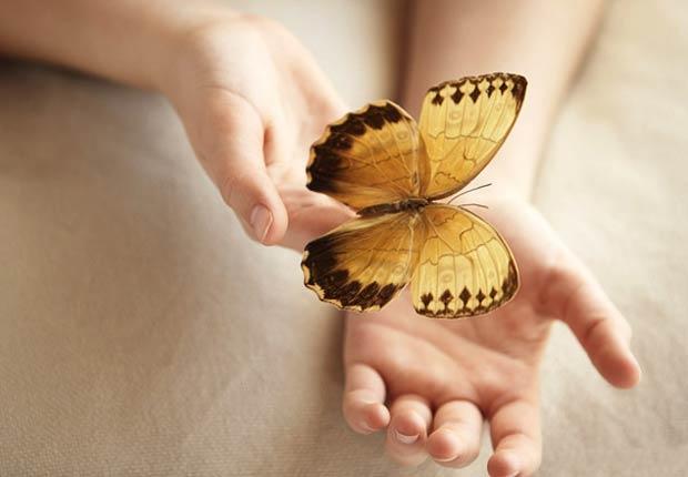 Mariposa en las manos de una mujer - sea usted una prioridad